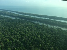 Tortuguero from the air